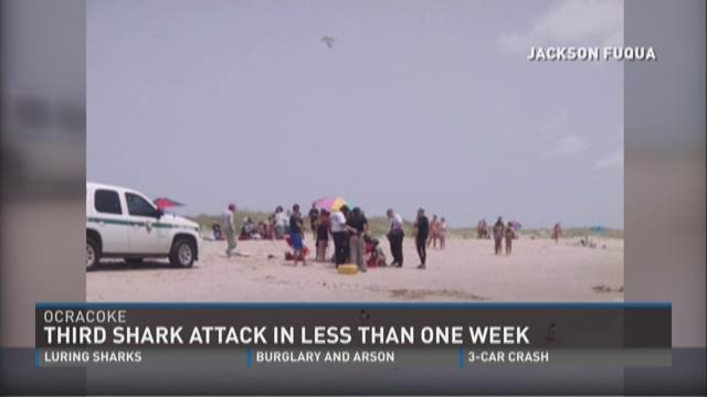 Ocracoke shark attack